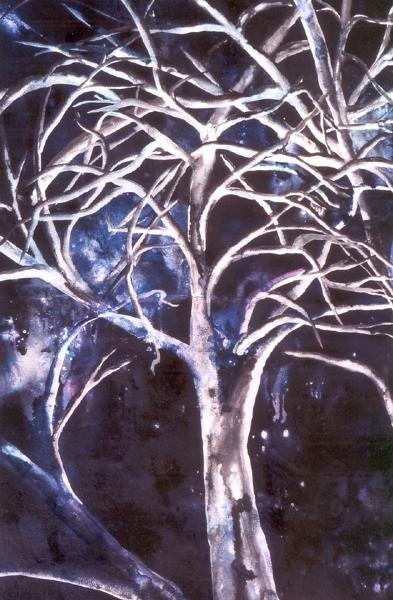 Baum in der Nacht - Rani B. Knobel