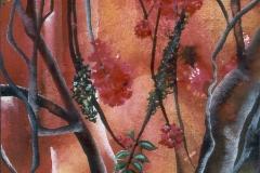 Bougainvilla im Abendlicht - Rani B. Knobel