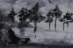 Kiefern - Rani B. Knobel